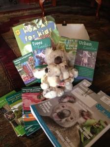 Koala information